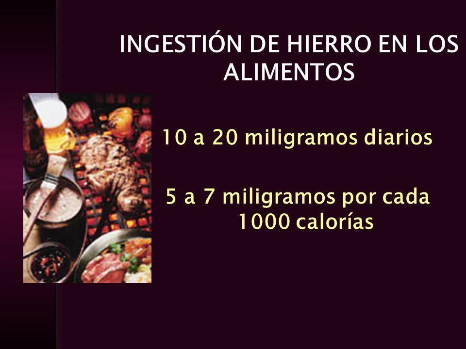 INGESTIÓN DE HIERRO EN LOS ALIMENTOS