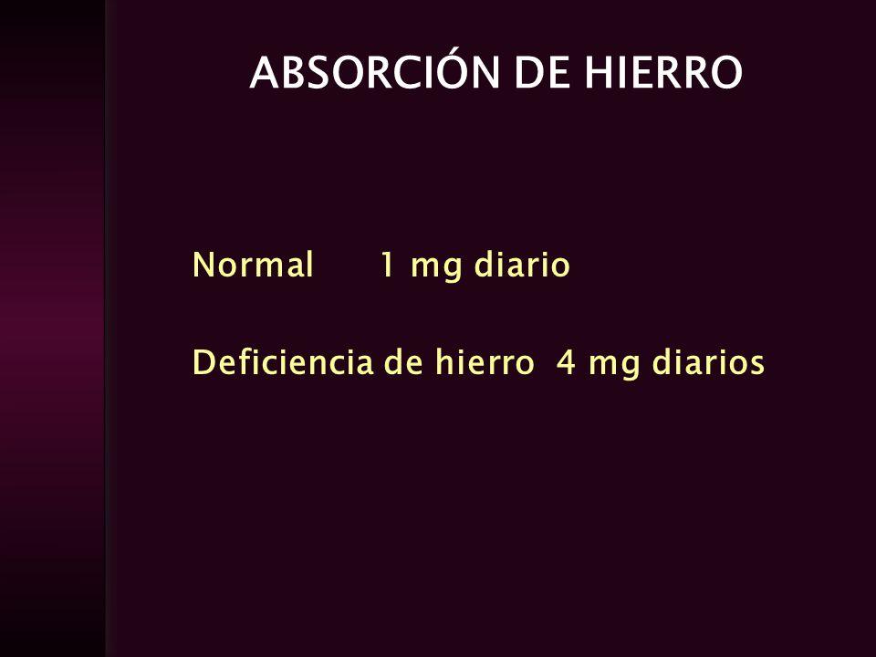 ABSORCIÓN DE HIERRO Normal 1 mg diario