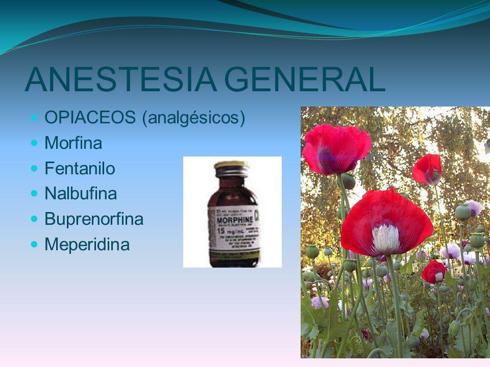 ANESTESIA GENERAL OPIACEOS (analgésicos) Morfina Fentanilo Nalbufina