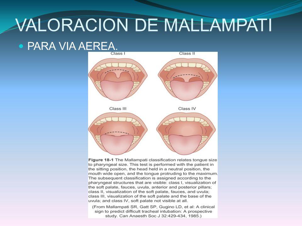 VALORACION DE MALLAMPATI