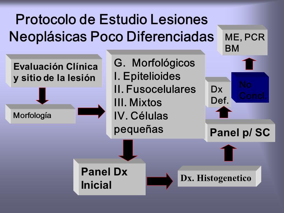 Protocolo de Estudio Lesiones Neoplásicas Poco Diferenciadas