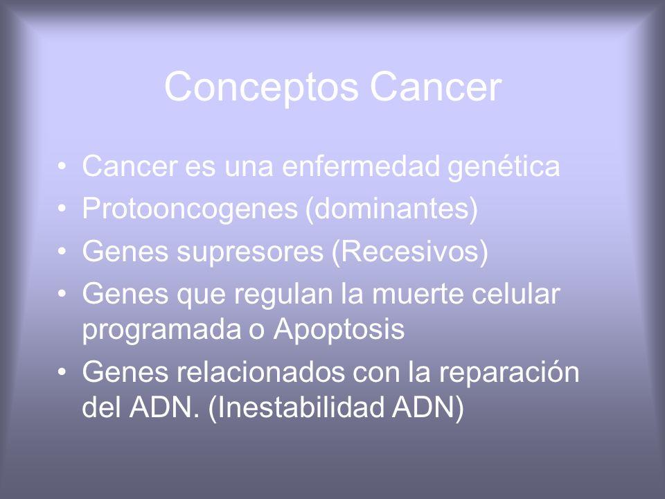 Conceptos Cancer Cancer es una enfermedad genética