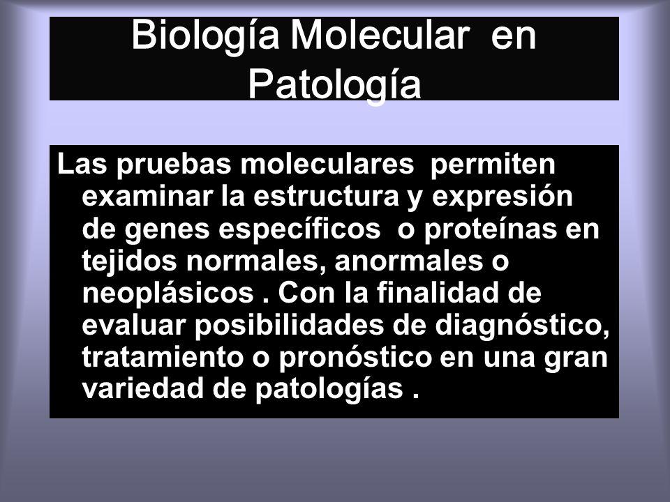 Biología Molecular en Patología