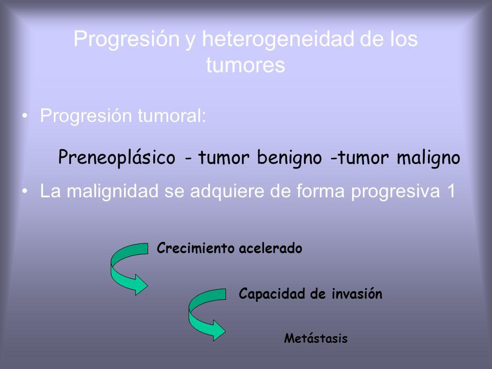 Progresión y heterogeneidad de los tumores