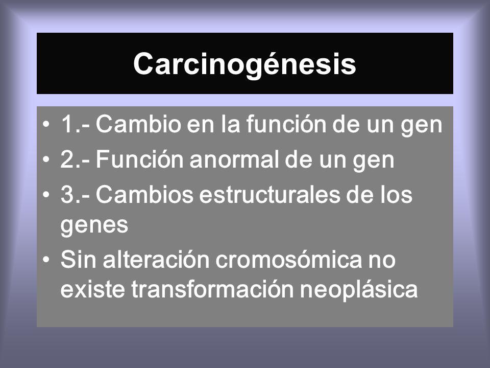 Carcinogénesis 1.- Cambio en la función de un gen