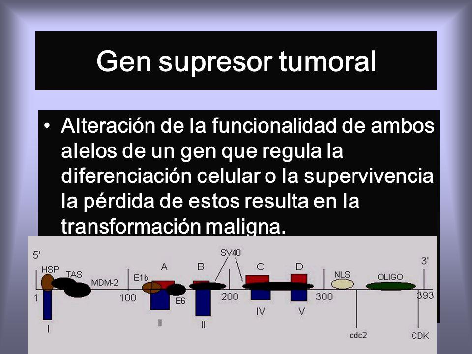 Gen supresor tumoral