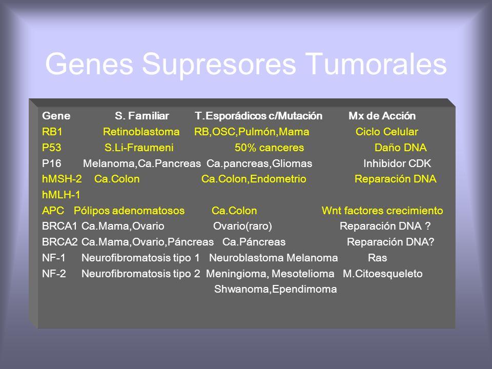 Genes Supresores Tumorales