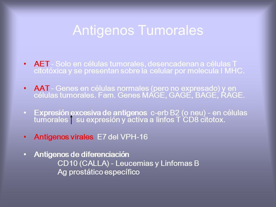 Antigenos Tumorales AET - Solo en células tumorales, desencadenan a células T citotóxica y se presentan sobre la celular por molecula I MHC.