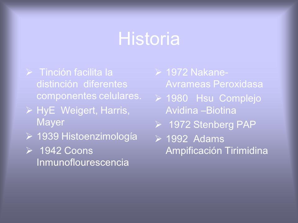 HistoriaTinción facilita la distinción diferentes componentes celulares. HyE Weigert, Harris, Mayer.