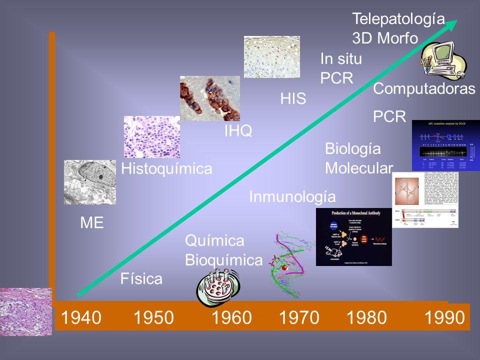 1940 1950 1960 1970 1980 1990 Telepatología 3D Morfo In situ PCR