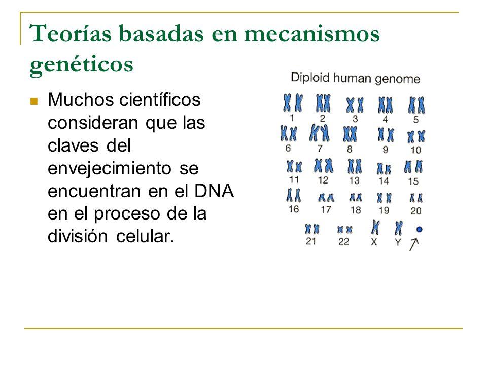 Teorías basadas en mecanismos genéticos