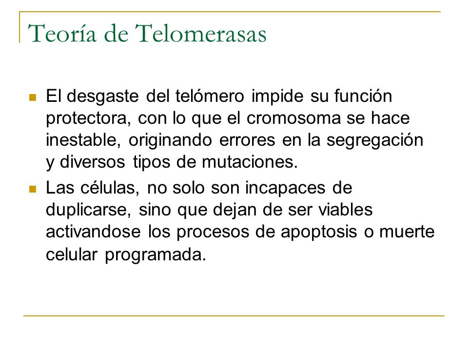 Teoría de Telomerasas