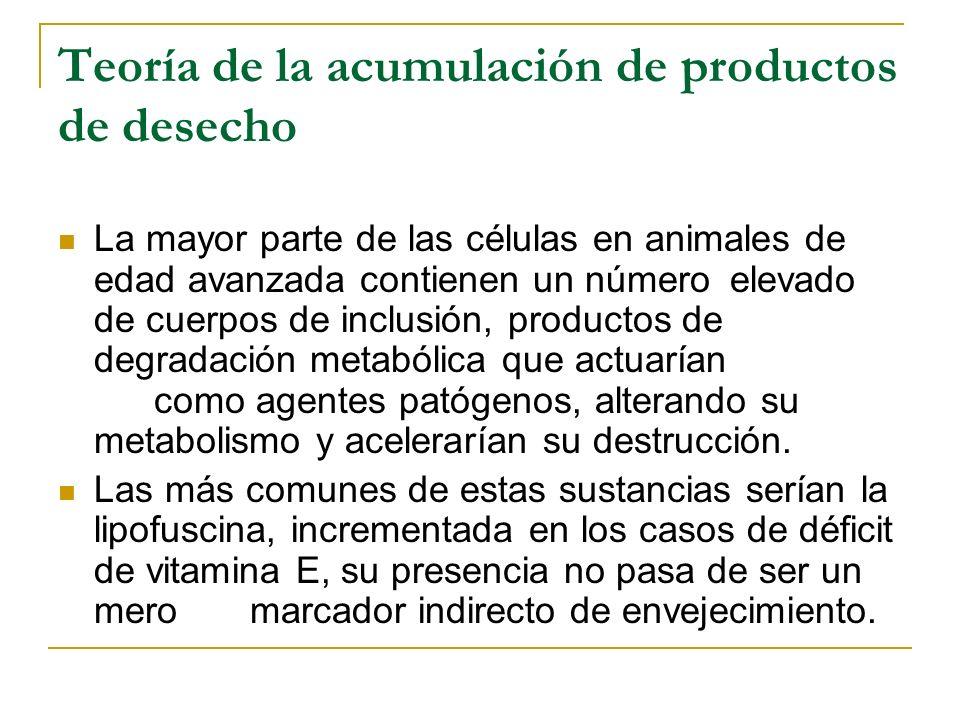 Teoría de la acumulación de productos de desecho