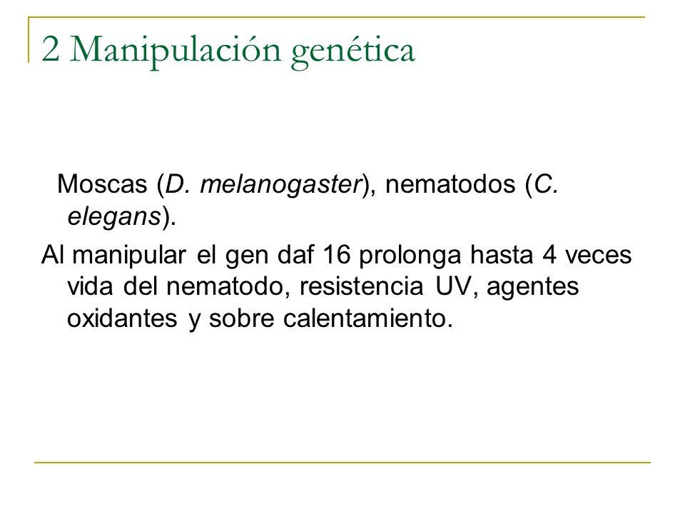 2 Manipulación genética