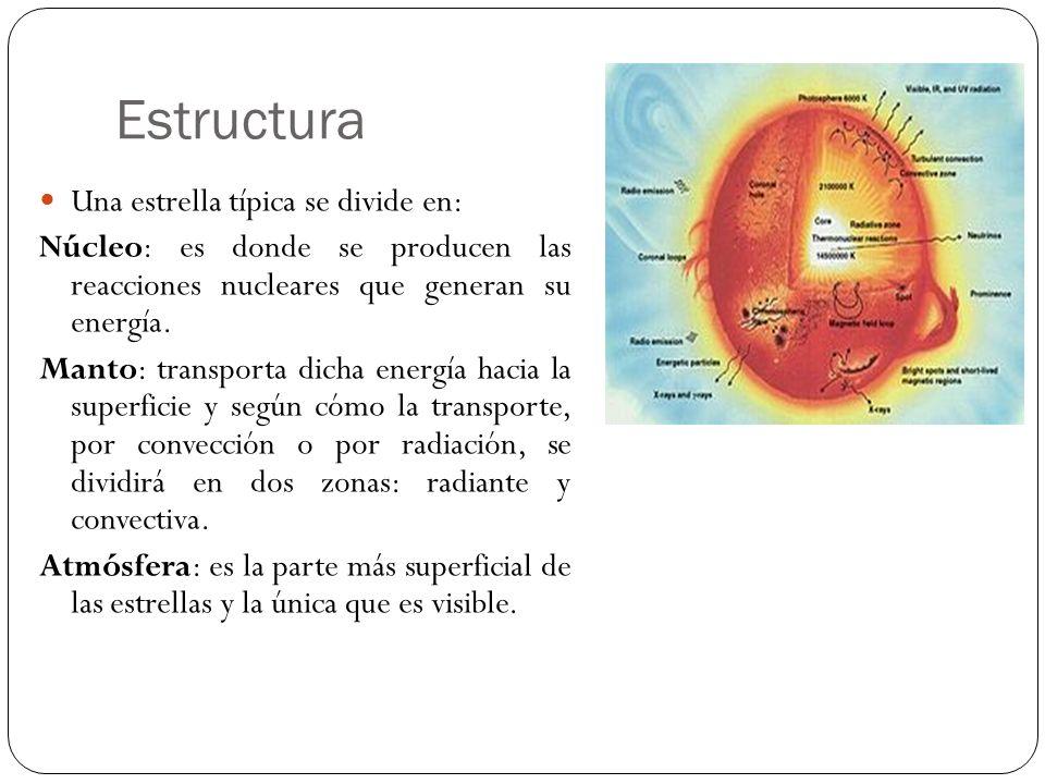 Estructura Una estrella típica se divide en:
