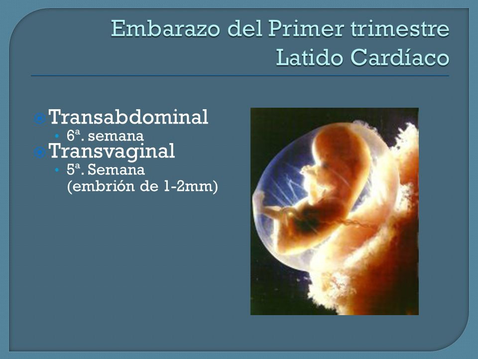 Embarazo del Primer trimestre Latido Cardíaco