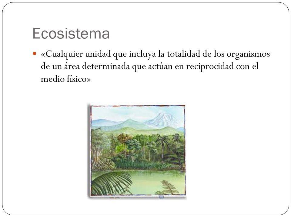 Ecosistema«Cualquier unidad que incluya la totalidad de los organismos de un área determinada que actúan en reciprocidad con el medio físico»