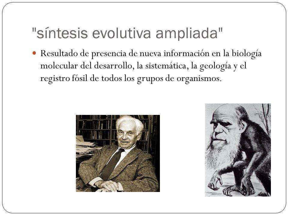 síntesis evolutiva ampliada
