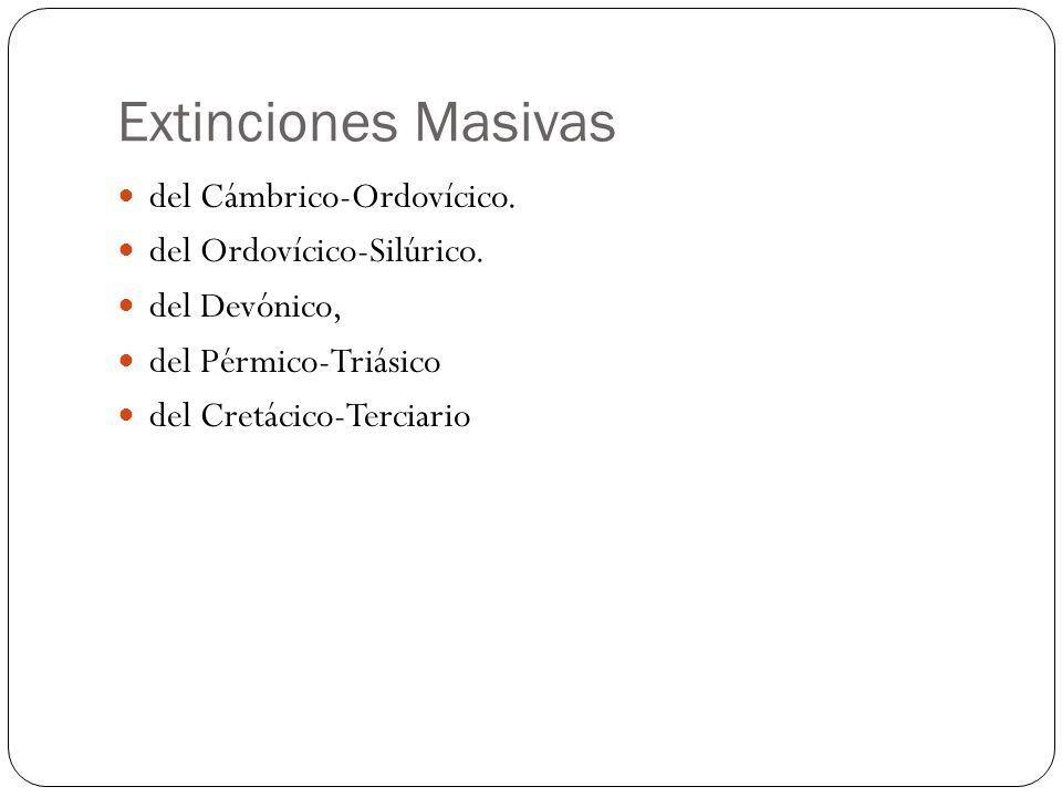 Extinciones Masivas del Cámbrico-Ordovícico. del Ordovícico-Silúrico.
