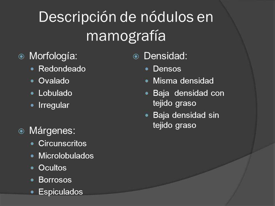 Descripción de nódulos en mamografía