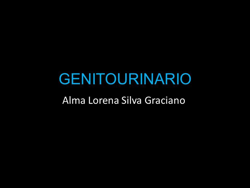 Alma Lorena Silva Graciano