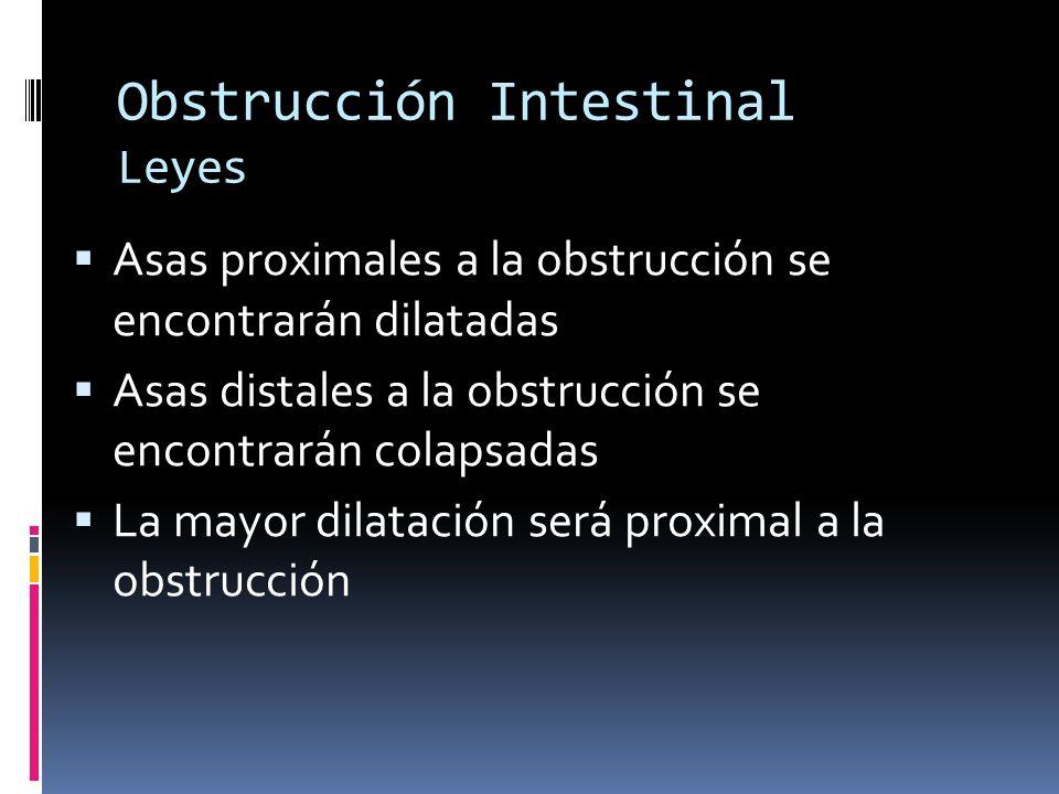 Obstrucción Intestinal Leyes