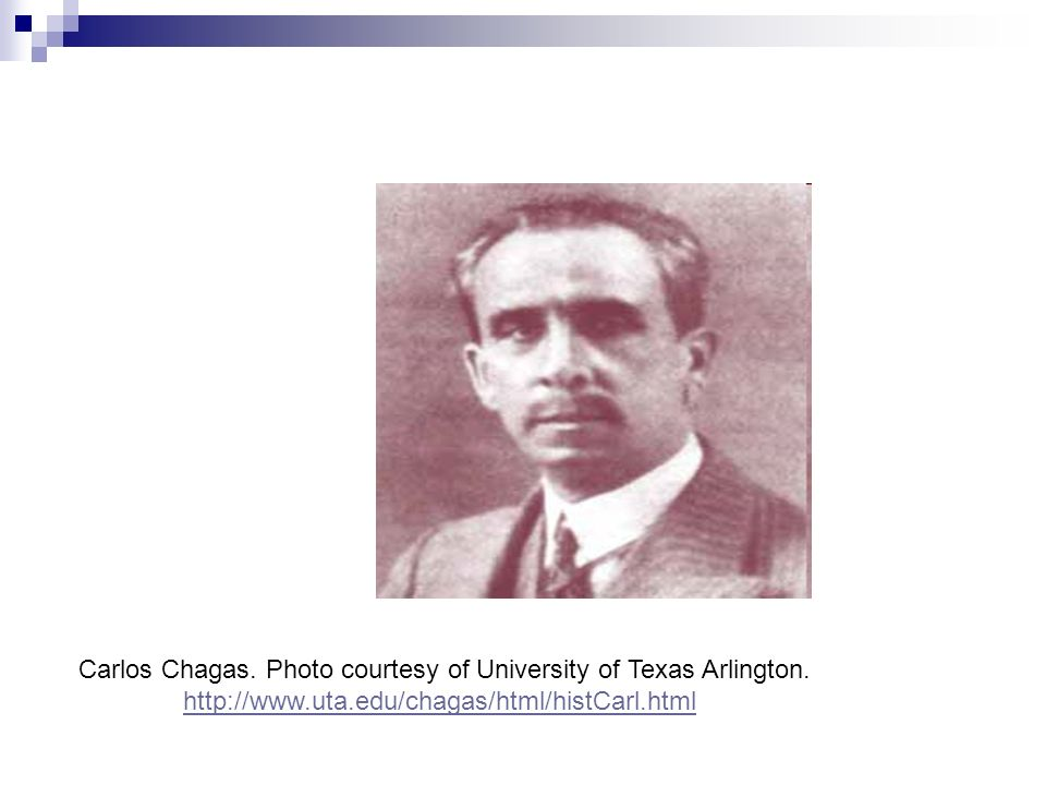 Carlos Chagas. Photo courtesy of University of Texas Arlington