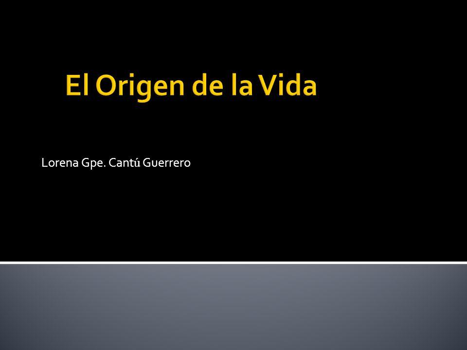 Lorena Gpe. Cantú Guerrero
