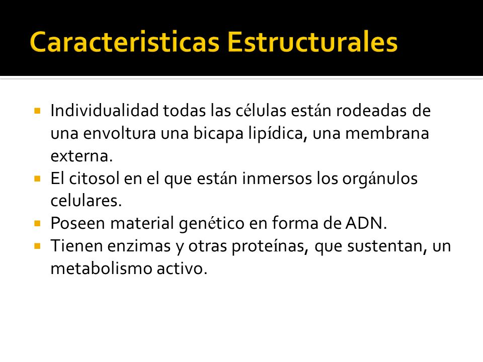 Caracteristicas Estructurales