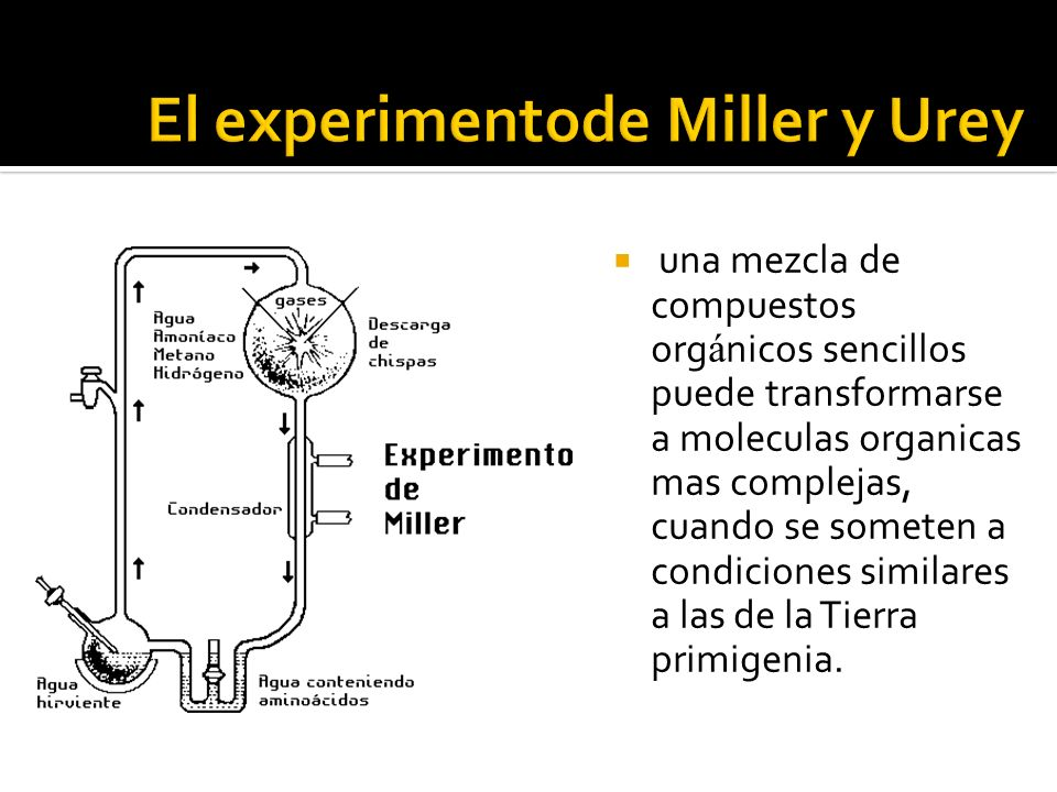 El experimentode Miller y Urey