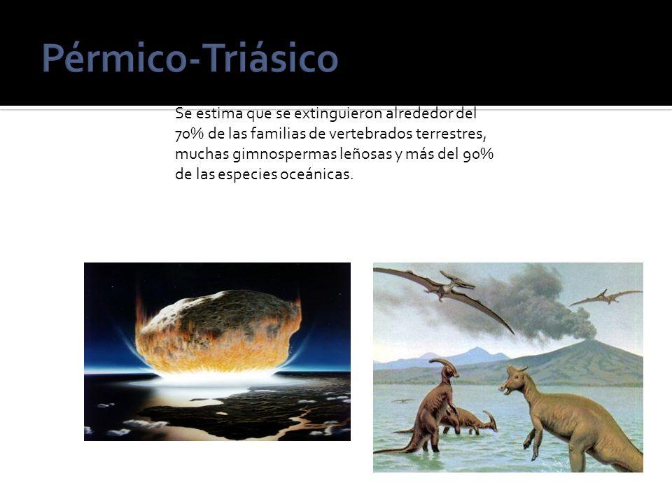 Pérmico-Triásico