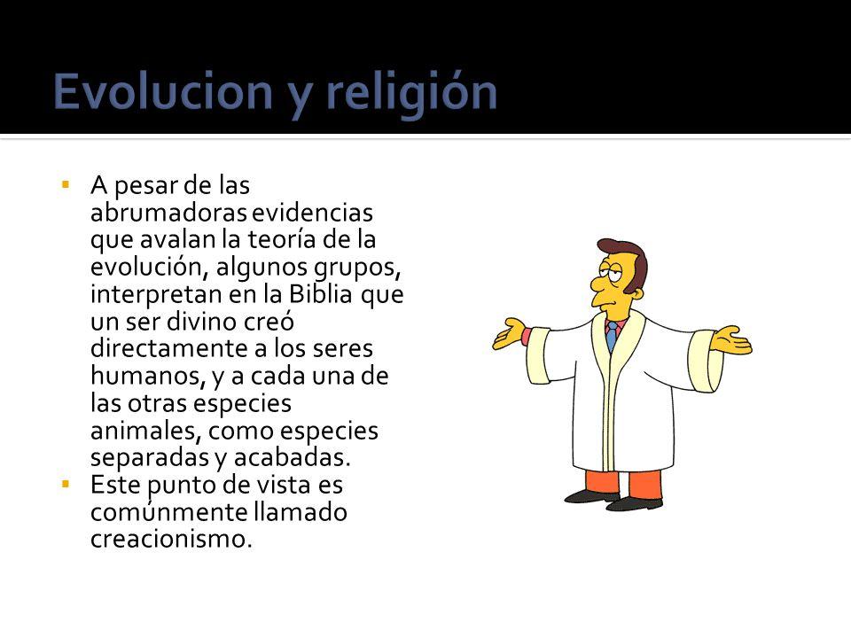 Evolucion y religión