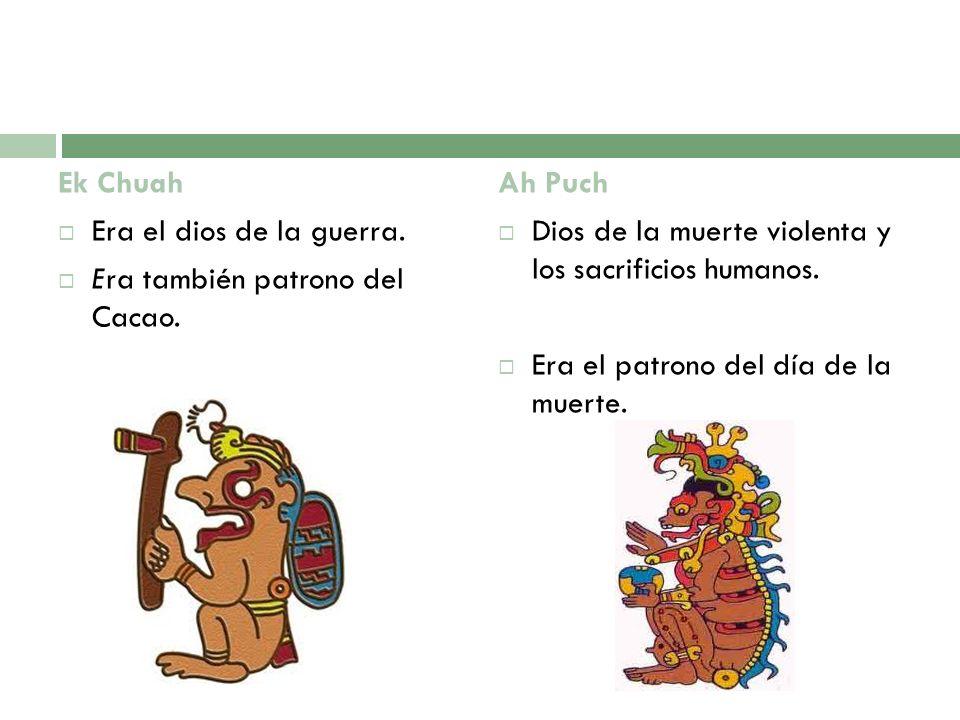 Ek Chuah Era el dios de la guerra. Era también patrono del Cacao. Ah Puch. Dios de la muerte violenta y los sacrificios humanos.