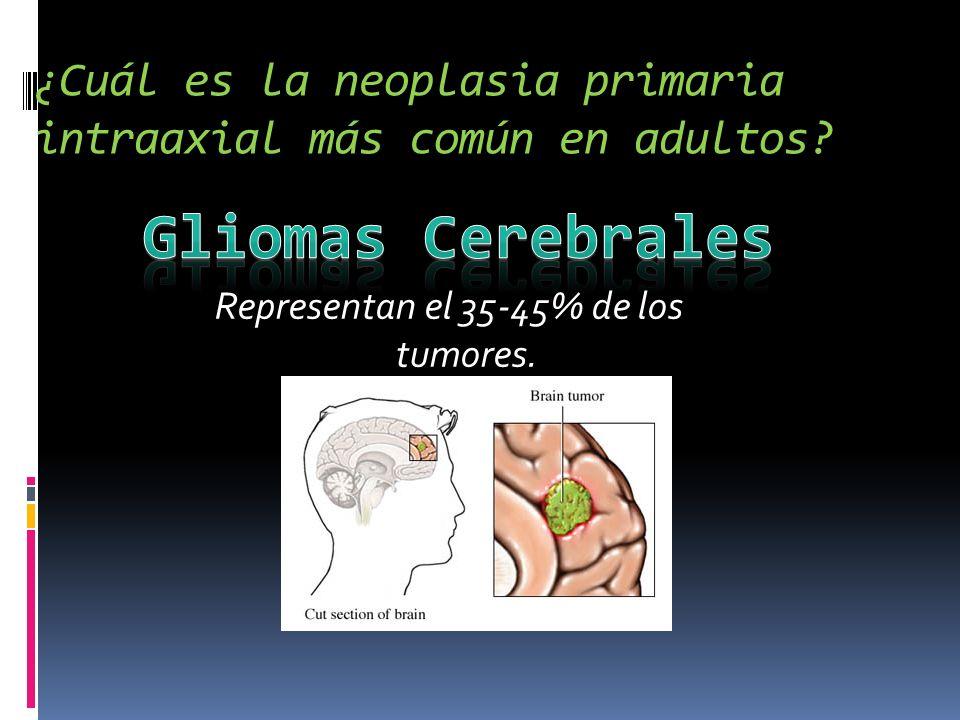 ¿Cuál es la neoplasia primaria intraaxial más común en adultos