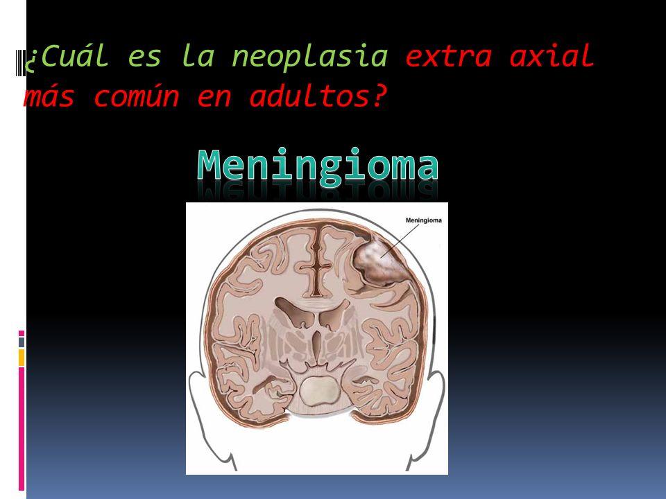 ¿Cuál es la neoplasia extra axial más común en adultos