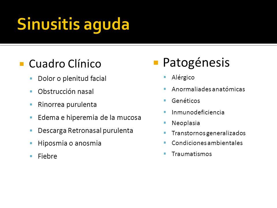 Sinusitis aguda Patogénesis Cuadro Clínico Dolor o plenitud facial