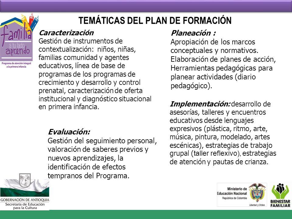 TEMÁTICAS DEL PLAN DE FORMACIÓN