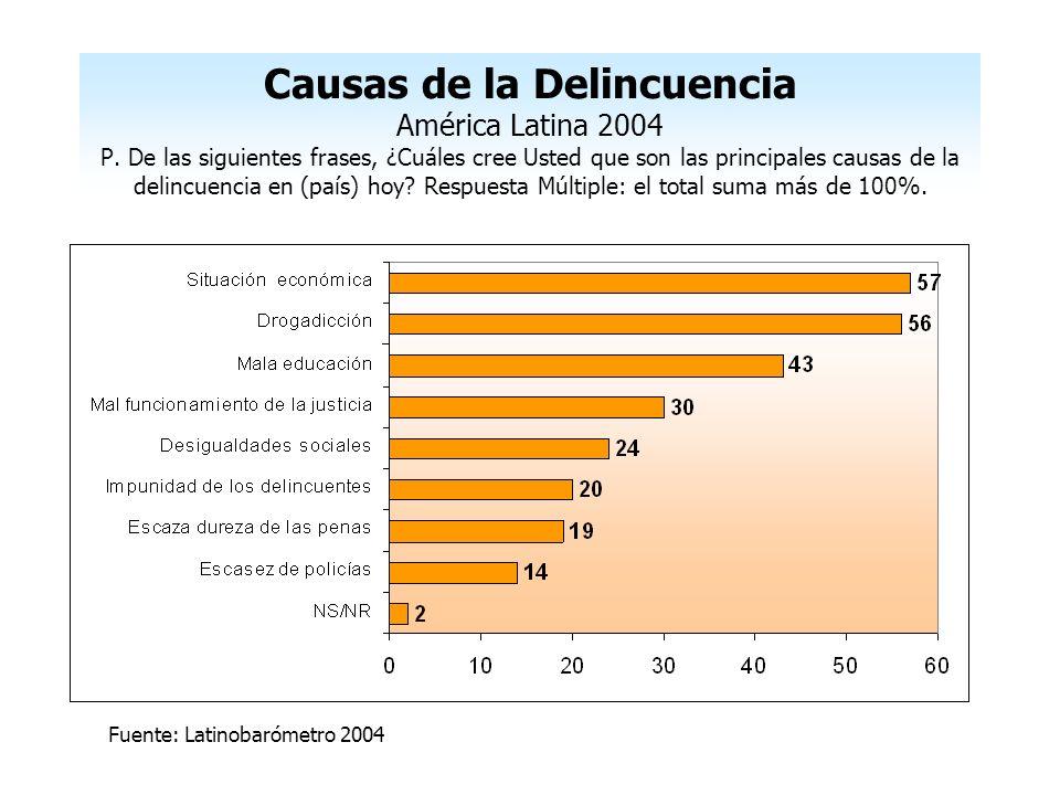 Causas de la Delincuencia América Latina 2004 P