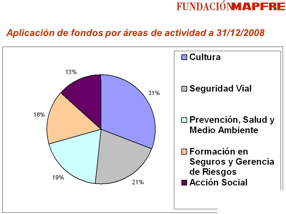 Aplicación de fondos por áreas de actividad a 31/12/2008