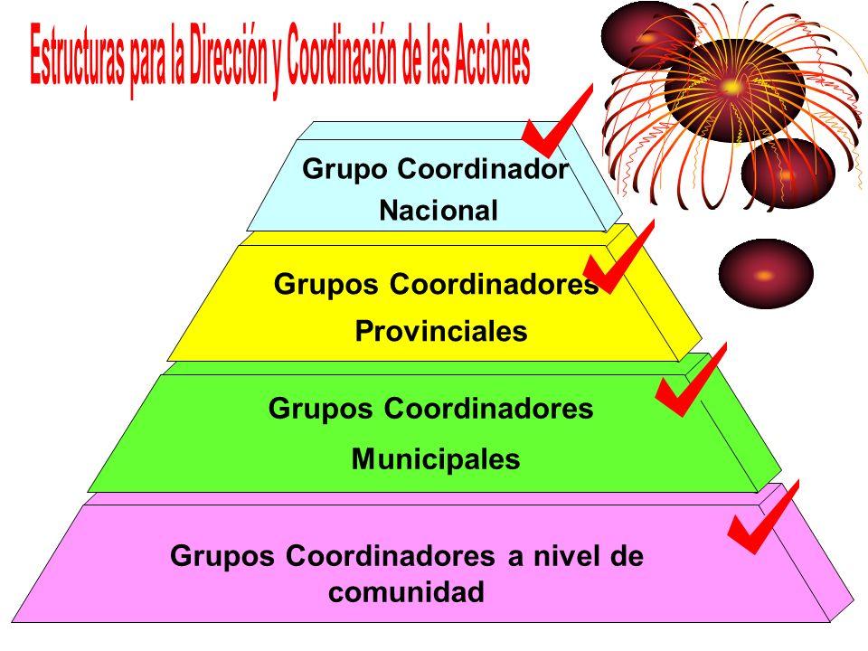 Estructuras para la Dirección y Coordinación de las Acciones