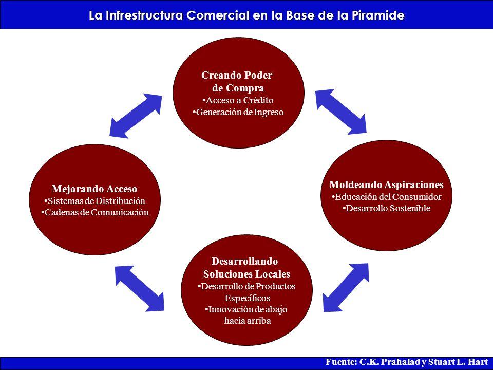 La Infrestructura Comercial en la Base de la Piramide