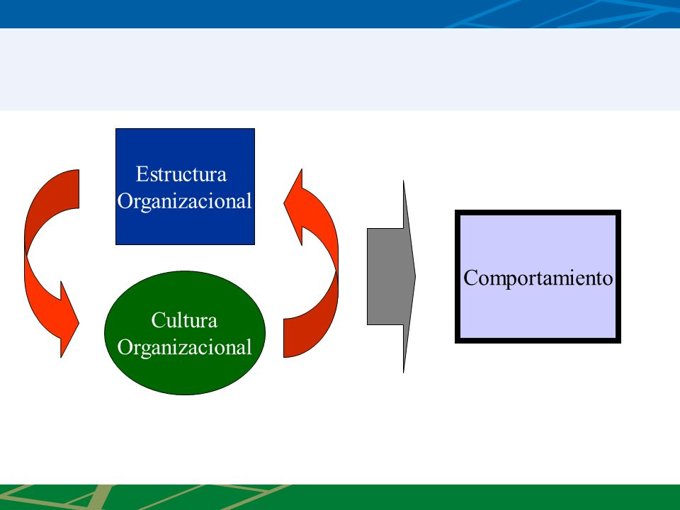Estructura Organizacional Comportamiento Cultura Organizacional