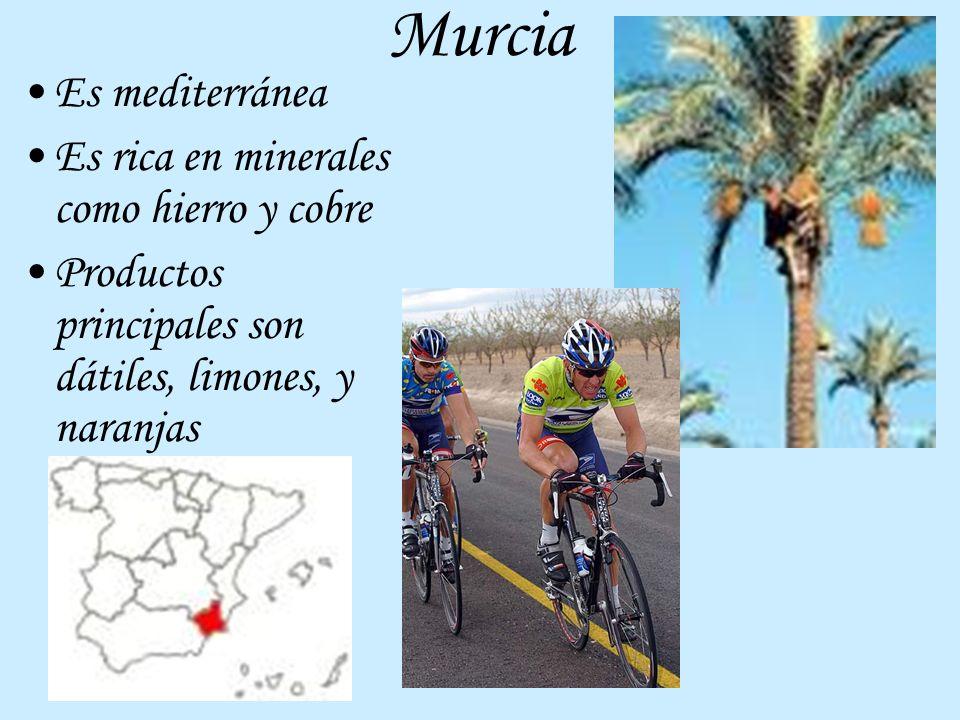 Murcia Es mediterránea Es rica en minerales como hierro y cobre