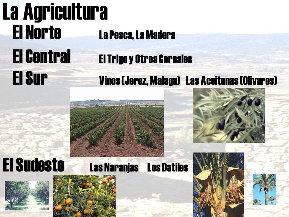 La Agricultura El Norte La Pesca, La Madera
