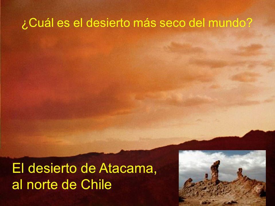 El desierto de Atacama, al norte de Chile