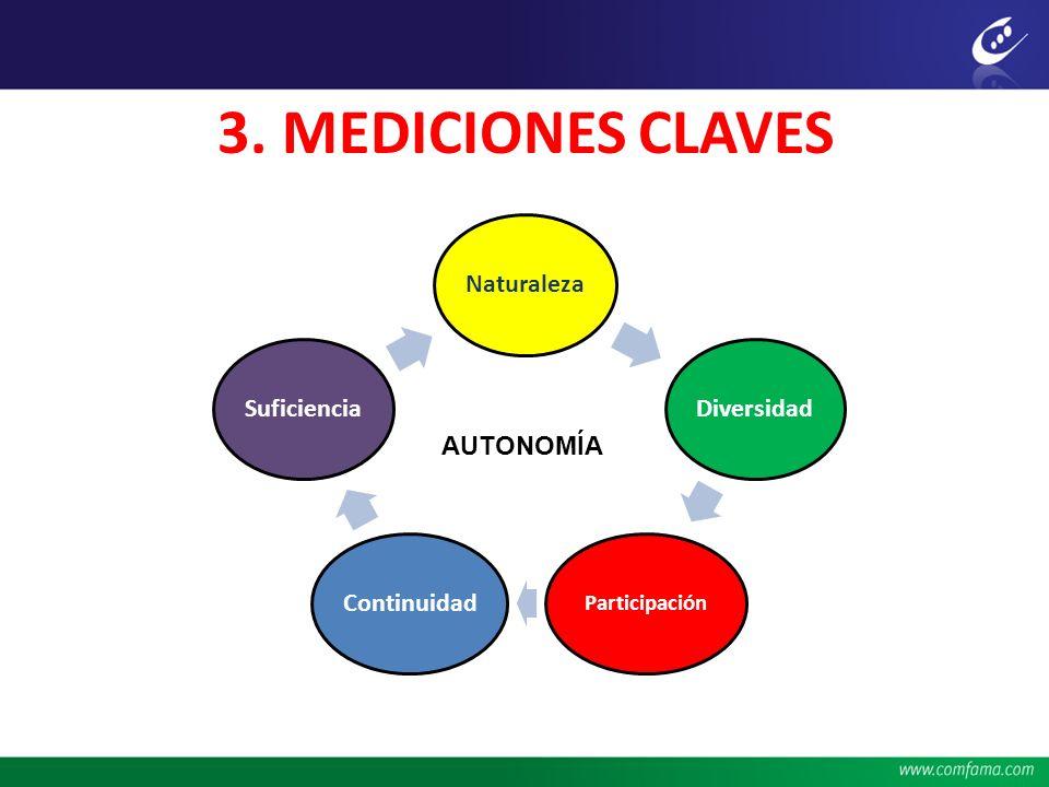 3. MEDICIONES CLAVES Naturaleza Diversidad Continuidad Suficiencia