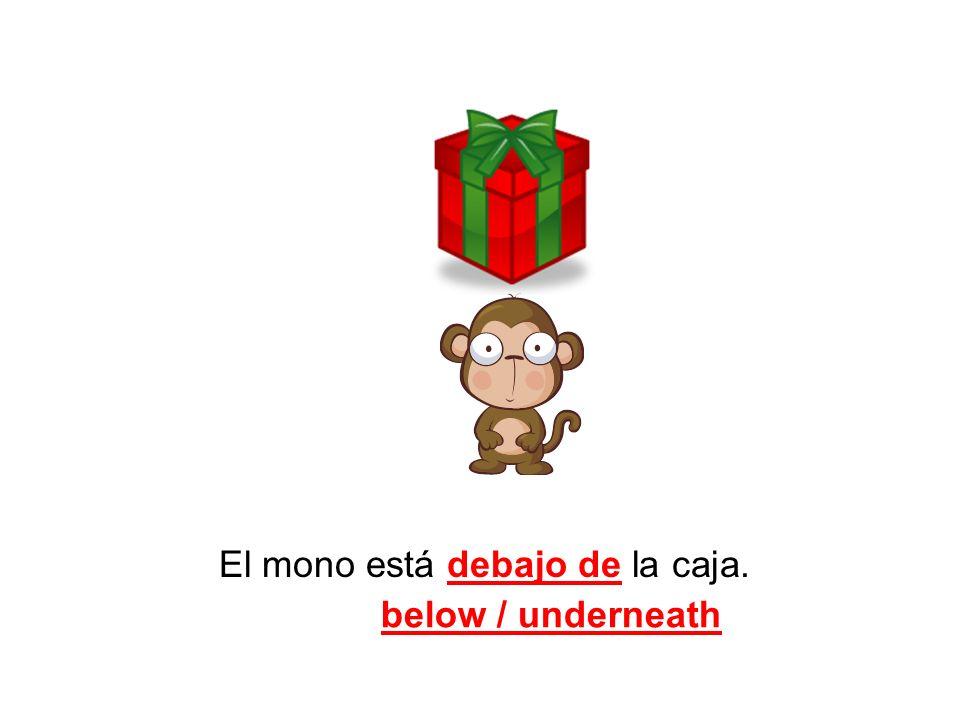 El mono está debajo de la caja.