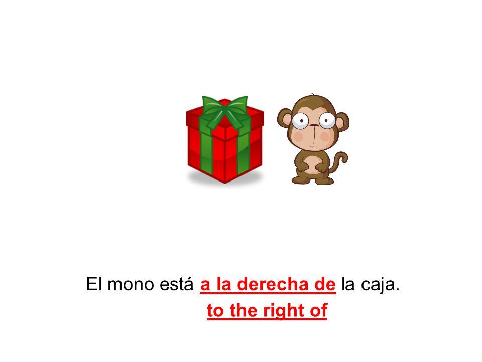 El mono está a la derecha de la caja.