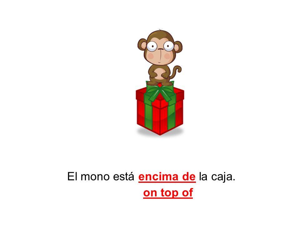 El mono está encima de la caja.