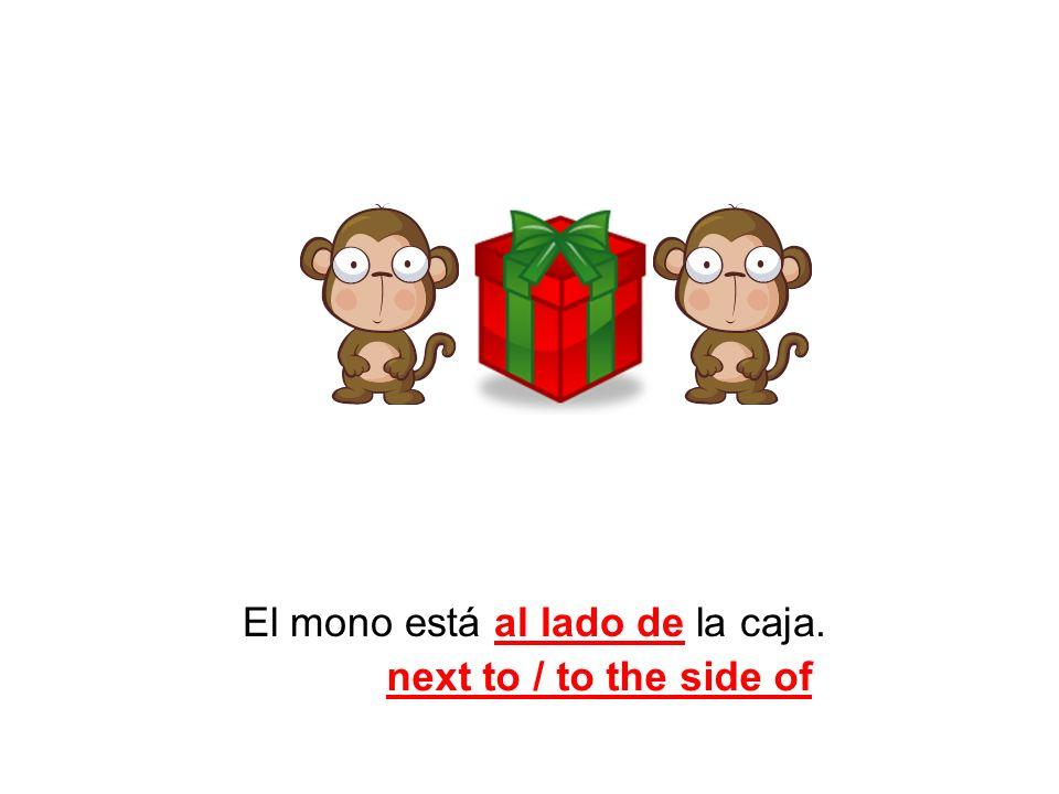 El mono está al lado de la caja.